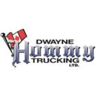 Dwayne Hommy Trucking Ltd - Logo