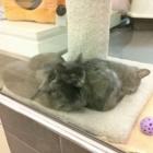 Pet Habitat - Pet Shops - 604-433-2913