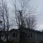 LD Tree Service