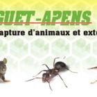 Guet-Apens Extermination - Pest Control Services - 450-653-5093