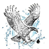 Voir le profil de Les Systèmes d'Eau Eagle Rive-Sud Inc. - Varennes
