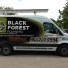 Black Forest Plumbing Inc - Plumbers & Plumbing Contractors - 905-252-9994