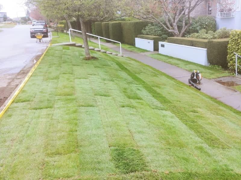 photo Dunbar Lawns and Gardens Ltd.