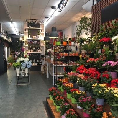 Fleuressence Monkland - Grocery Stores