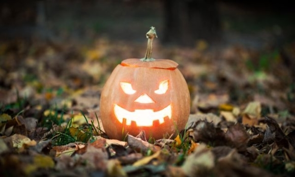 Where to find Halloween costumes and décor in Toronto