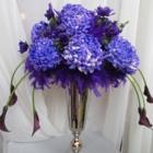 Primavera Flowers & More Ltd - Florists & Flower Shops - 905-850-7545