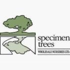 Specimen Trees Wholesale Nurseries Ltd - Nurseries & Tree Growers