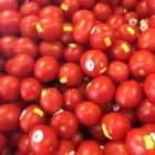 Marchés Tau - Aliments naturels et biologiques - 450-443-9922