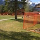 Portable Fencing Red Deer