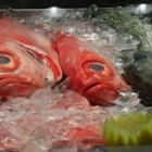 Poissonnerie Shamrock Fish Ltee - Fish & Seafood Stores - 514-272-5612