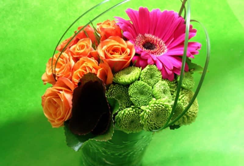 Floralies Jouvence Qu 233 Bec Qc 2020 Av Jules Verne