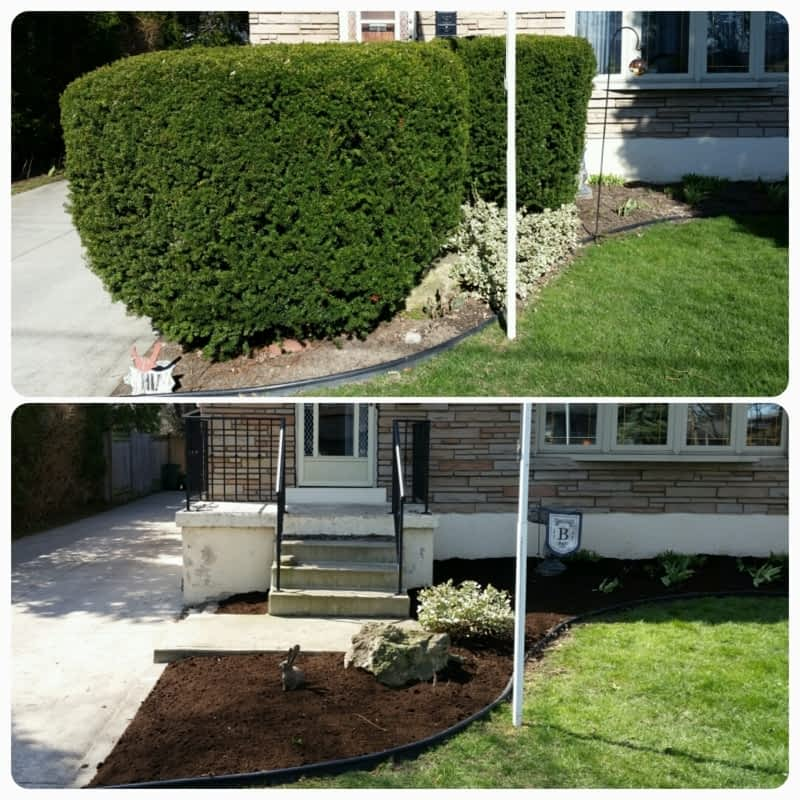 photo Mountainview Landscape & Maintenance