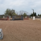 Cazador Equestrian - Riding Academies - 905-929-7891