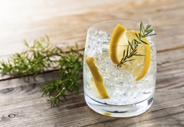 Vancouver bars for a refreshing gin and tonic