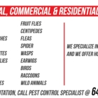 Accord Pest Control - Pest Control Services - 647-469-1000