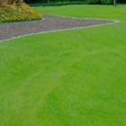 View Central Landscape Supplies Ltd's Mill Bay profile