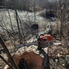 Verti-Go Arboriculture - Pépinières et arboriculteurs