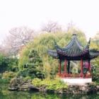 Dr Sun Yat-Sen Classical Chinese Garden - Attractions touristiques - 604-662-3207