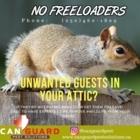 CanGuard Pest Solutions