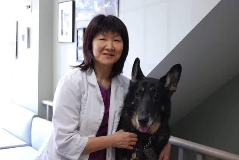 photo Kato Animal Hospital