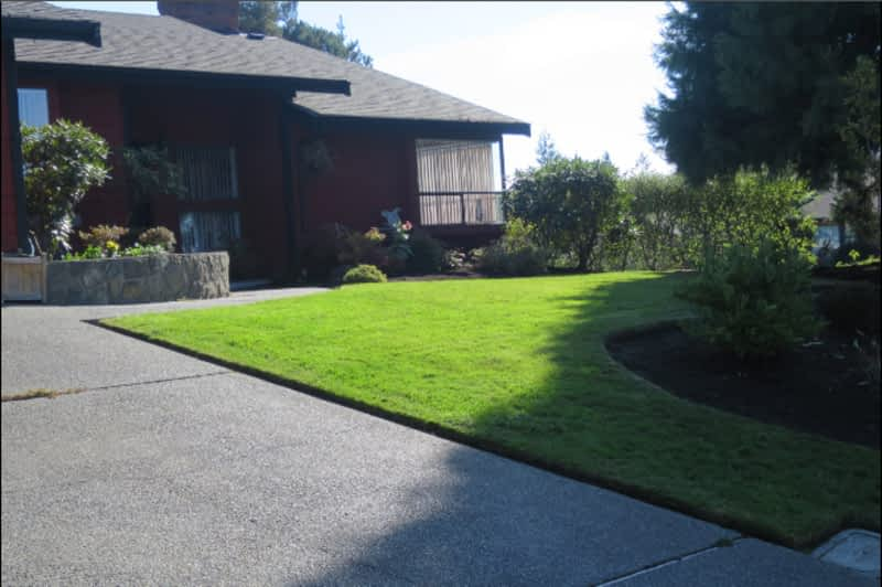 photo Courteous George Landscaping