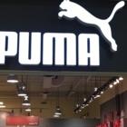 The Puma Store - 905-891-5958