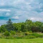 Tims Trimming - Landscape Contractors & Designers - 250-724-1510