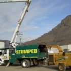 Stumped Tree Service - Landscape Contractors & Designers