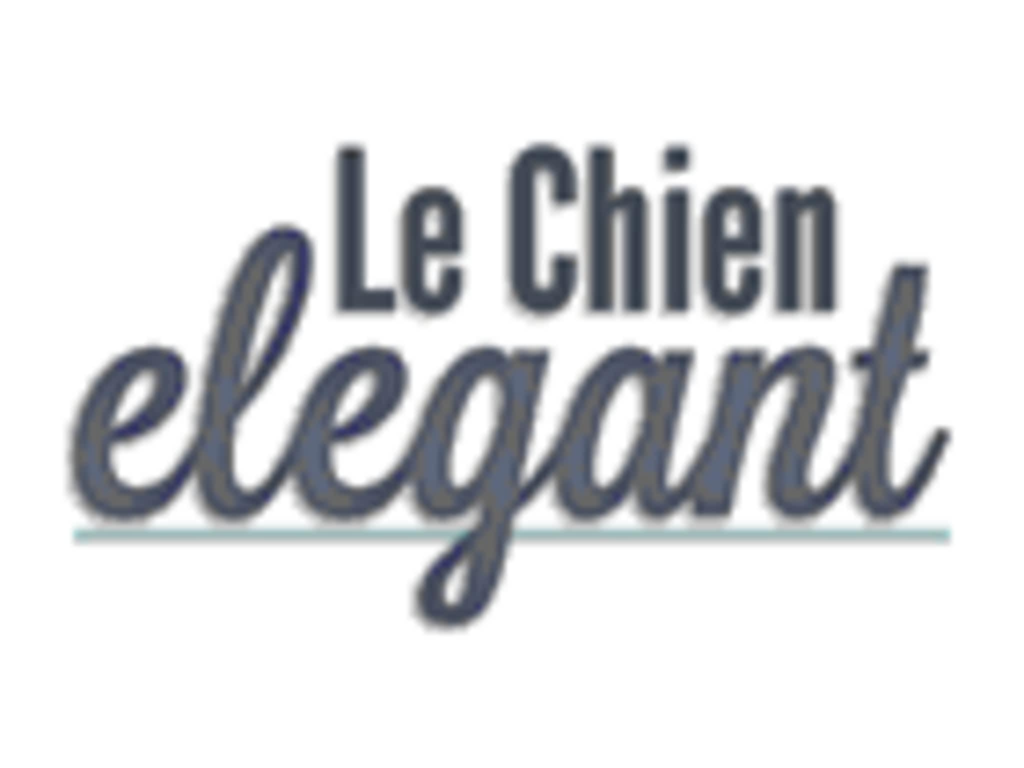 photo Le Chien Elegant