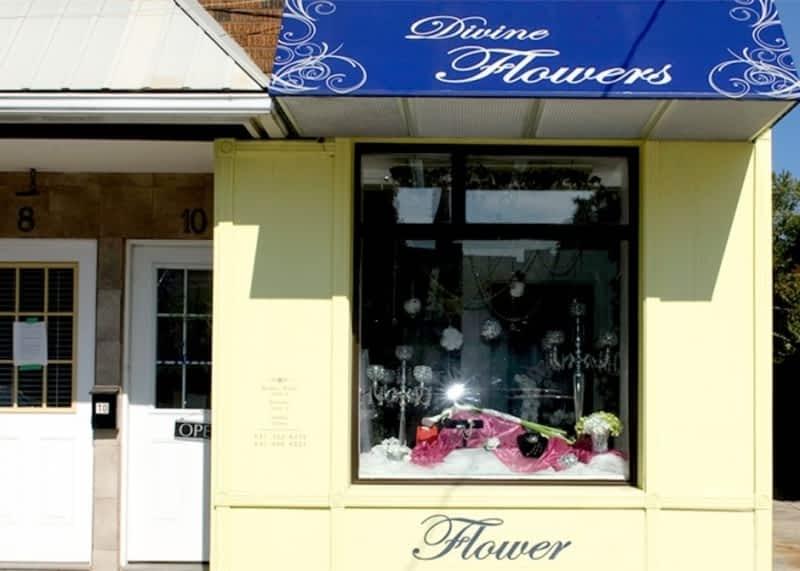 photo Divine Flowers