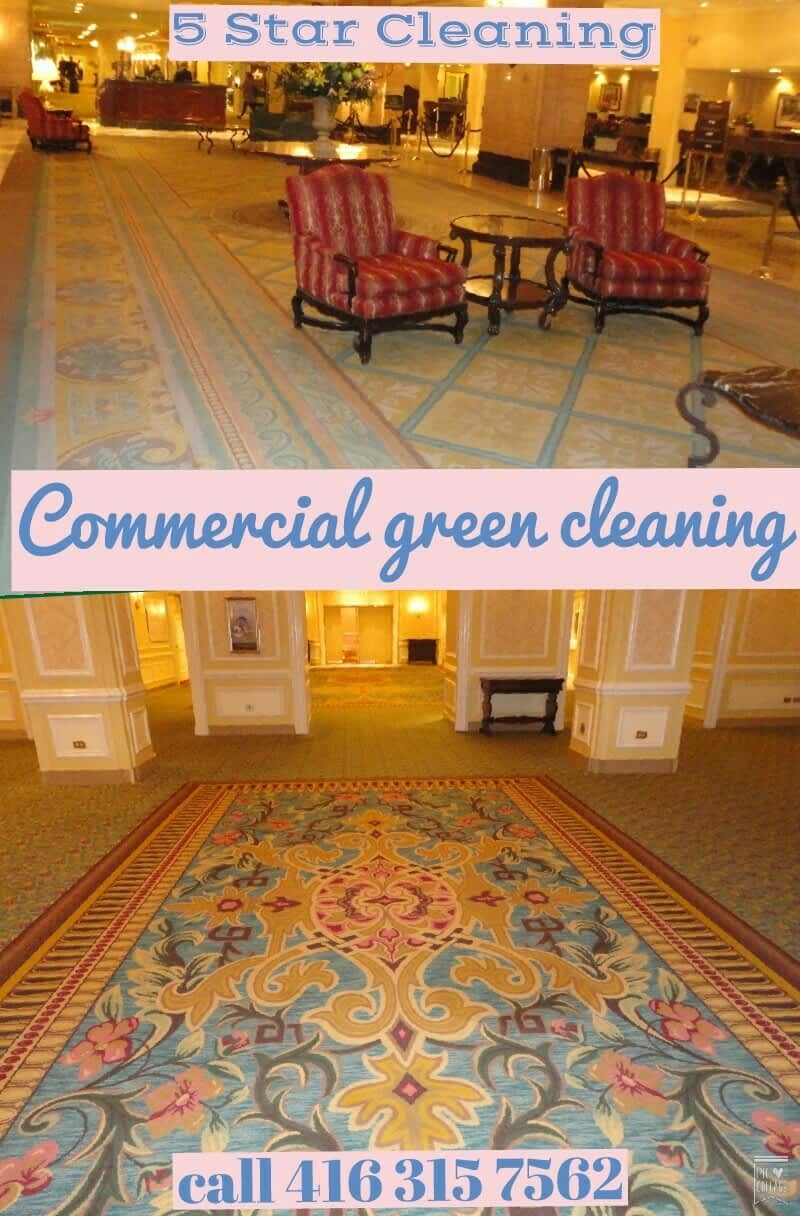Five Star Rug amp Carpet Cleaning Richmond Hill ON 24