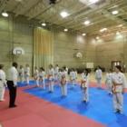 Karate Excellence - Écoles et cours d'arts martiaux et d'autodéfense - 514-243-9979