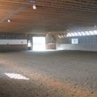 Académie équestre AMM SENC - Centres équestres - 514-867-3980
