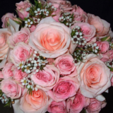 Voir le profil de Fleuriste Le Temps Des Caprices Enr - Saint-Calixte