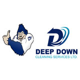 Voir le profil de Deep Down Cleaning Services Ltd - Waverley