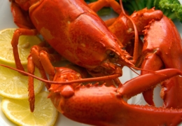 Dine in style and enjoy superior seafood in Montreal