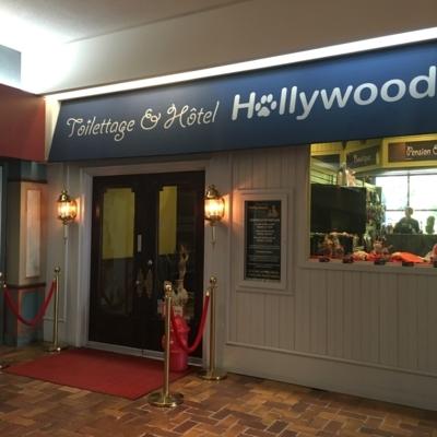 Pension et Hôtel Hollywood - Chenils - 514-506-9663