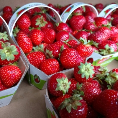 Fruiterie Valmont - Magasins de fruits et légumes - 514-523-8003