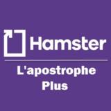 View L'Apostrophe Plus Inc's Sainte-Adèle profile
