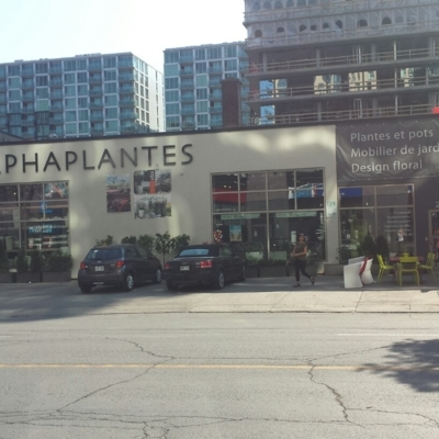 AlphaPlantes - Magasins de plantes d'intérieur