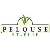 Pelouse St-Elie Inc - Entretien de gazon