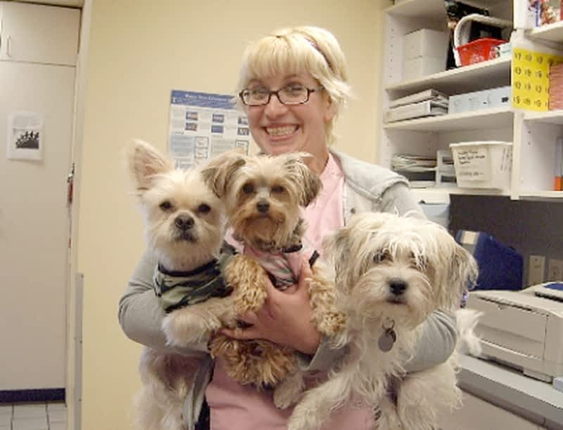 photo Granville Island Veterinary Hospital