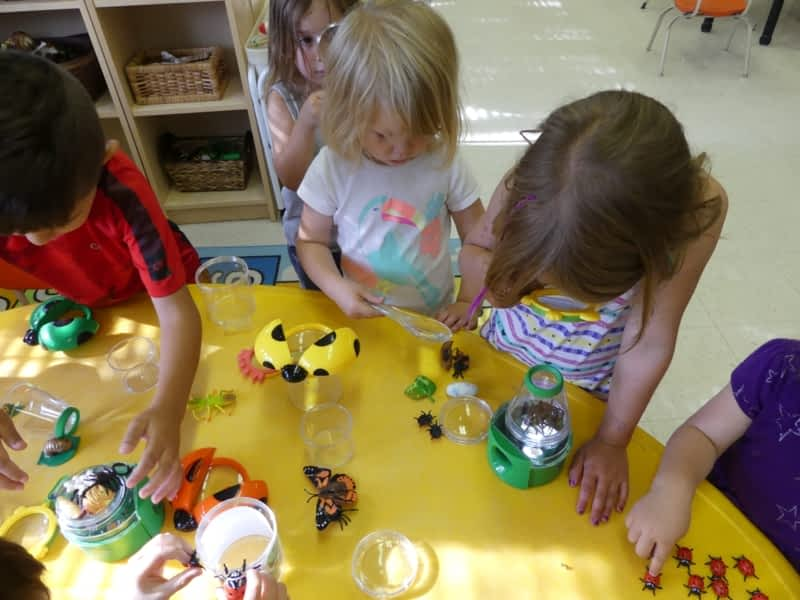 photo Les Tournesols/Sunflowers Bilingual Montessori Centre (TMBC)