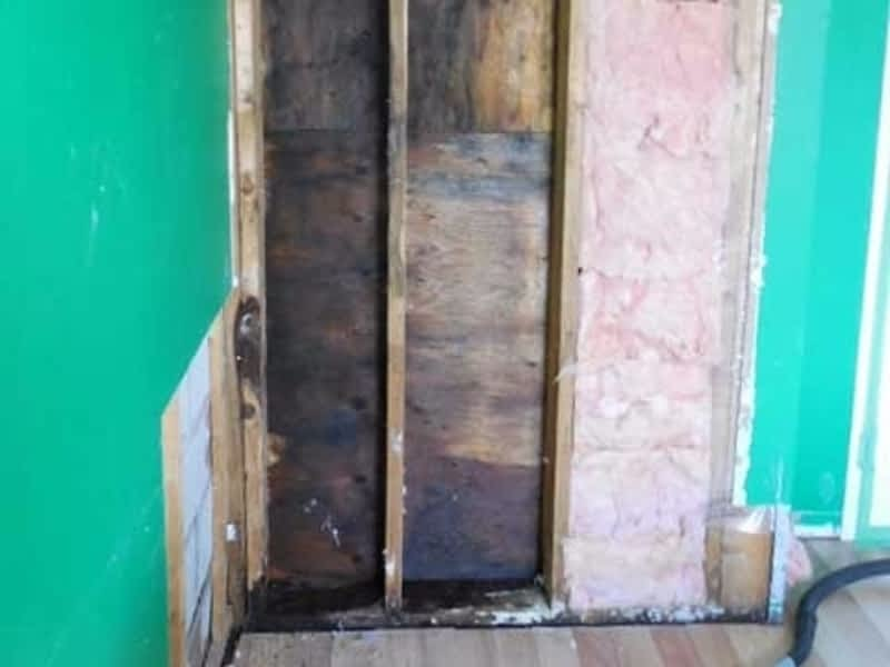 photo Alert Restoration Inc