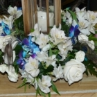 Ottawa Flowers - Florists & Flower Shops - 613-737-5555