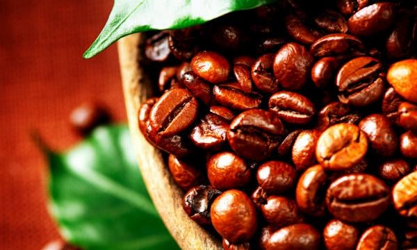 Excellent espresso beans to roast from Edmonton shops