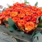 Toy Florist - Florists & Flower Shops - 416-848-0633