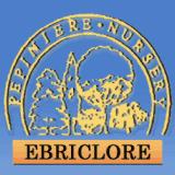 View Pépinière Ebriclore's Terrasse-Vaudreuil profile