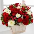 Paradise Flowers - Fleuristes et magasins de fleurs - 709-782-7676