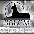 Salem Salon pour Chats - Toilettage et tonte d'animaux domestiques